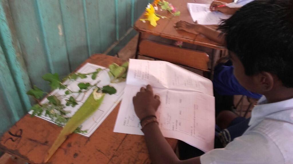 Velanai_VPO_Grade 5 _Scholarship_May28_5